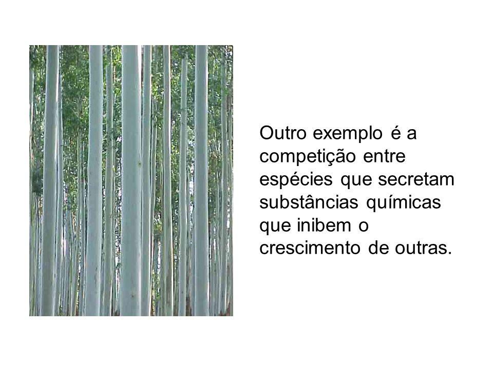 Outro exemplo é a competição entre espécies que secretam substâncias químicas que inibem o crescimento de outras.