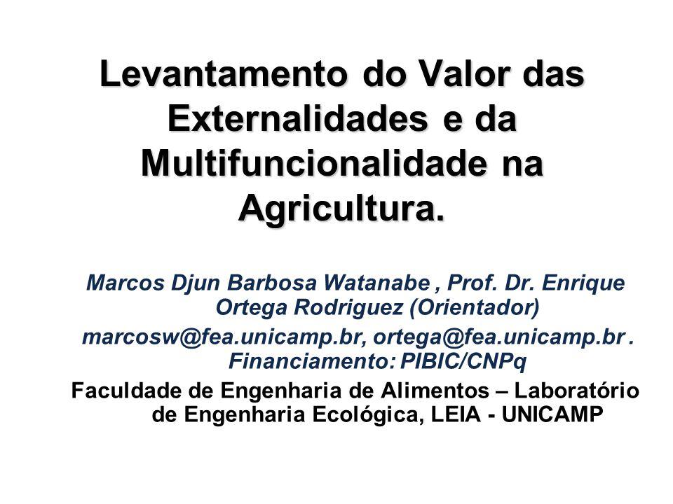 Levantamento do Valor das Externalidades e da Multifuncionalidade na Agricultura.