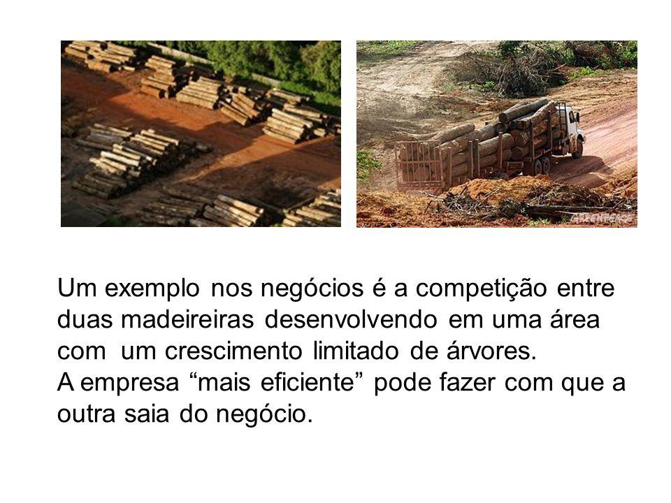 Um exemplo nos negócios é a competição entre duas madeireiras desenvolvendo em uma área com um crescimento limitado de árvores.