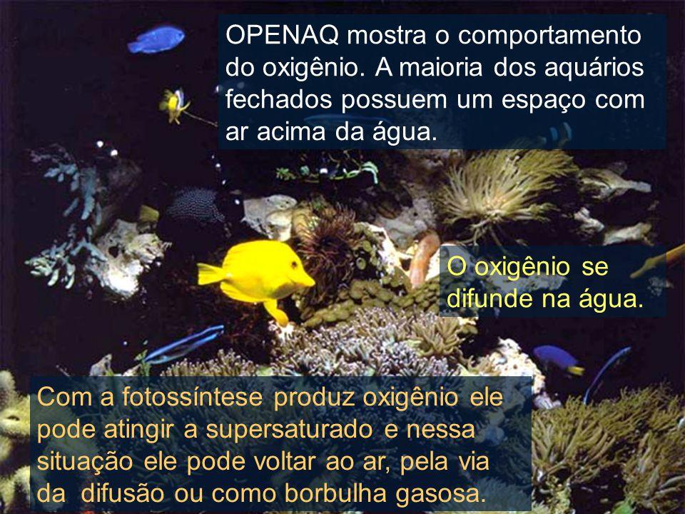 OPENAQ mostra o comportamento do oxigênio