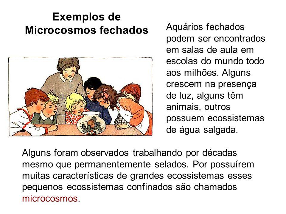 Exemplos de Microcosmos fechados