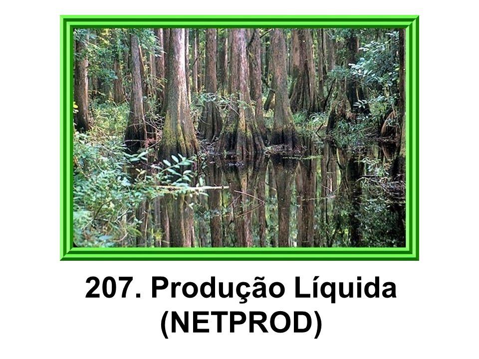 207. Produção Líquida (NETPROD)