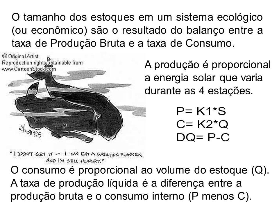 O tamanho dos estoques em um sistema ecológico (ou econômico) são o resultado do balanço entre a taxa de Produção Bruta e a taxa de Consumo.