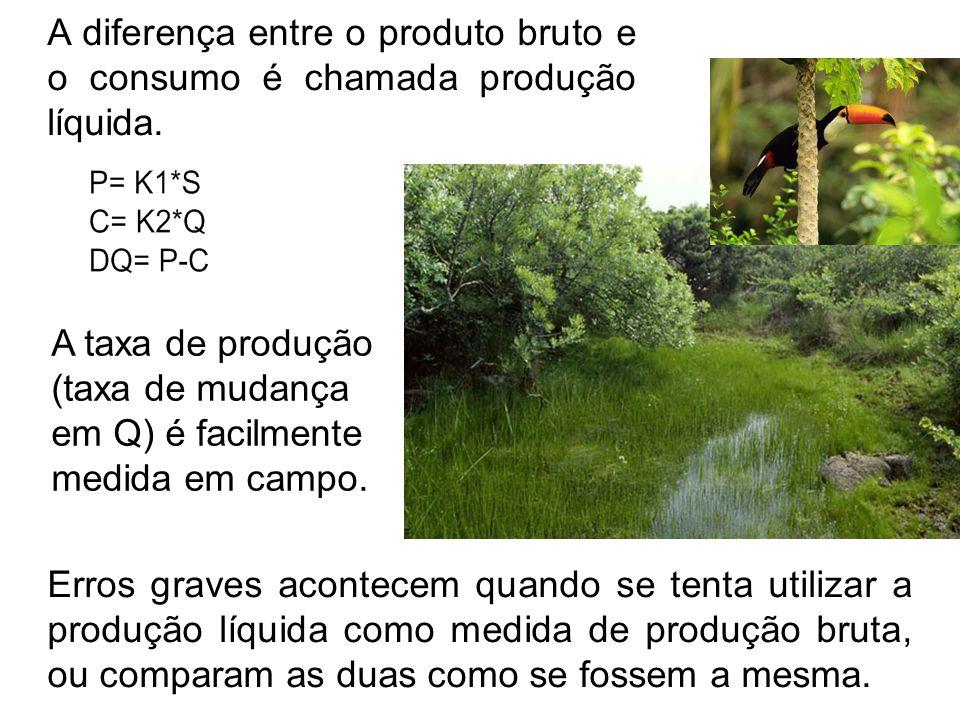 A diferença entre o produto bruto e o consumo é chamada produção líquida.
