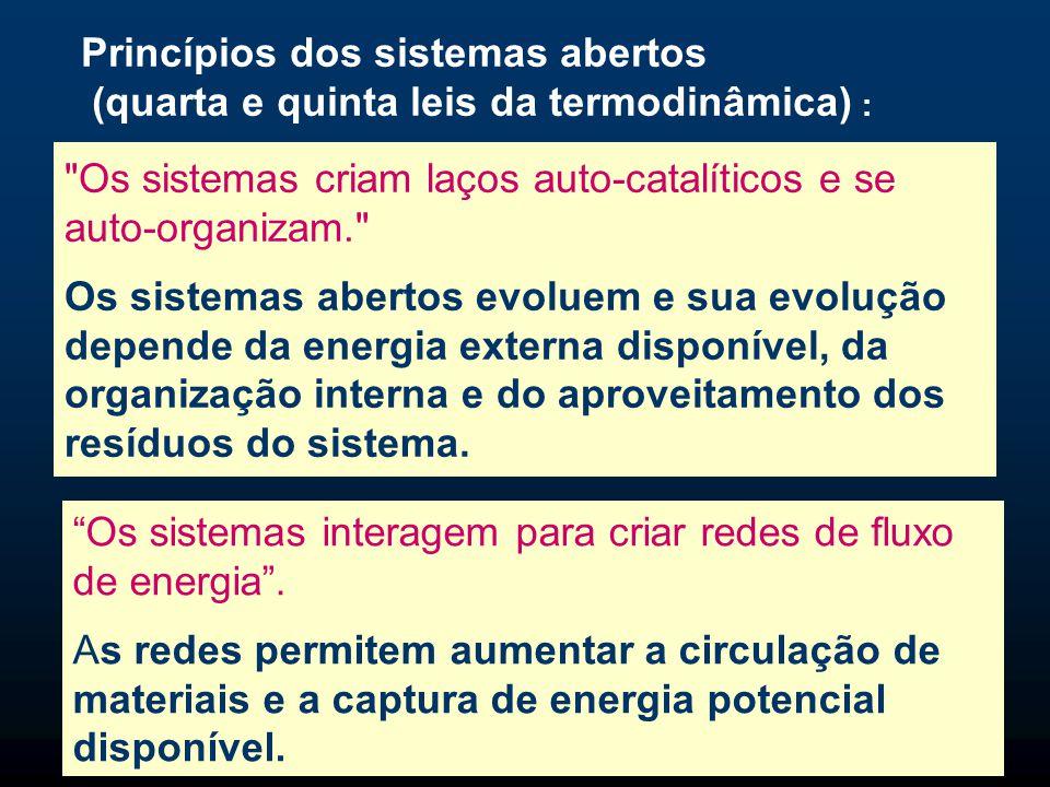 Princípios dos sistemas abertos (quarta e quinta leis da termodinâmica) :