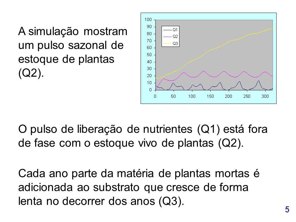 A simulação mostram um pulso sazonal de estoque de plantas (Q2).