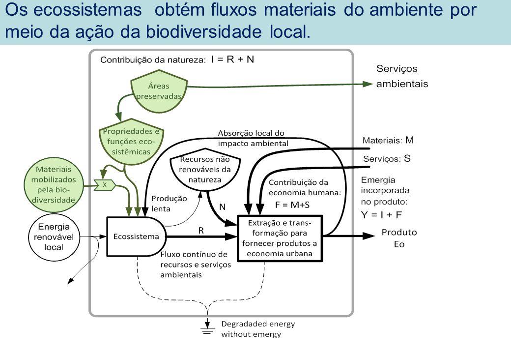 Os ecossistemas obtém fluxos materiais do ambiente por meio da ação da biodiversidade local.