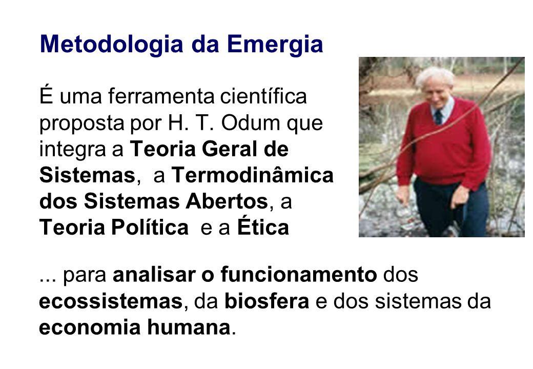 Metodologia da Emergia