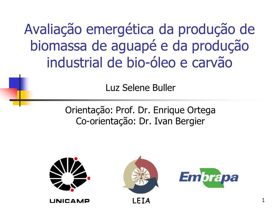 Avaliação emergética da produção de biomassa de aguapé e da produção industrial de bio-óleo e carvão