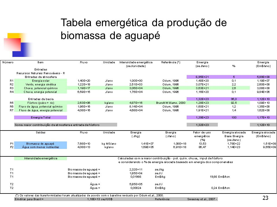 Tabela emergética da produção de biomassa de aguapé