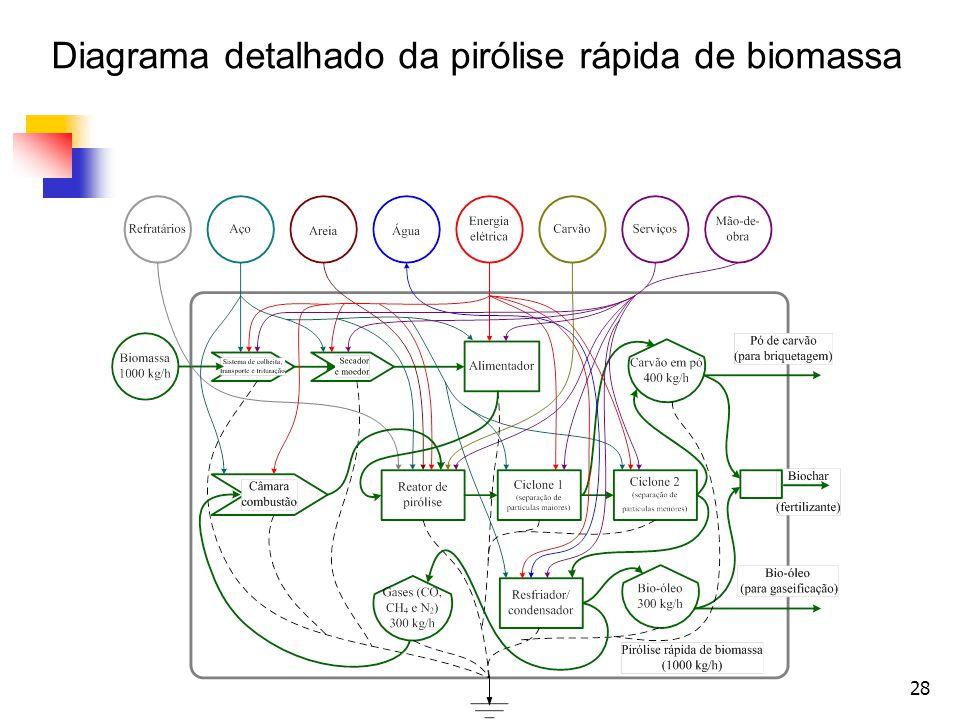 Diagrama detalhado da pirólise rápida de biomassa