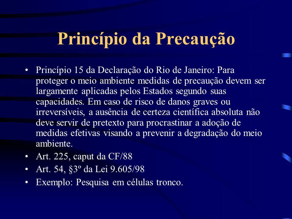 Princípio da Precaução