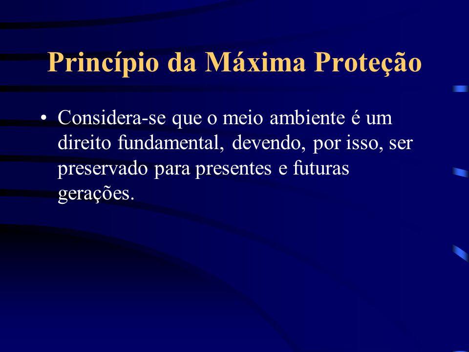 Princípio da Máxima Proteção