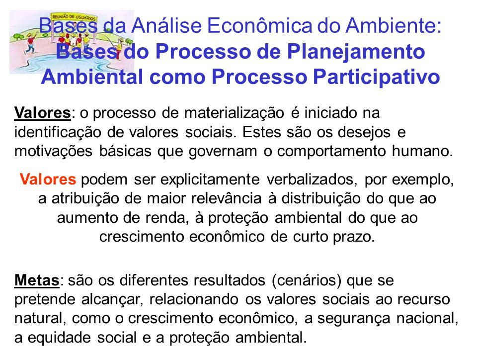 Bases da Análise Econômica do Ambiente: Bases do Processo de Planejamento Ambiental como Processo Participativo