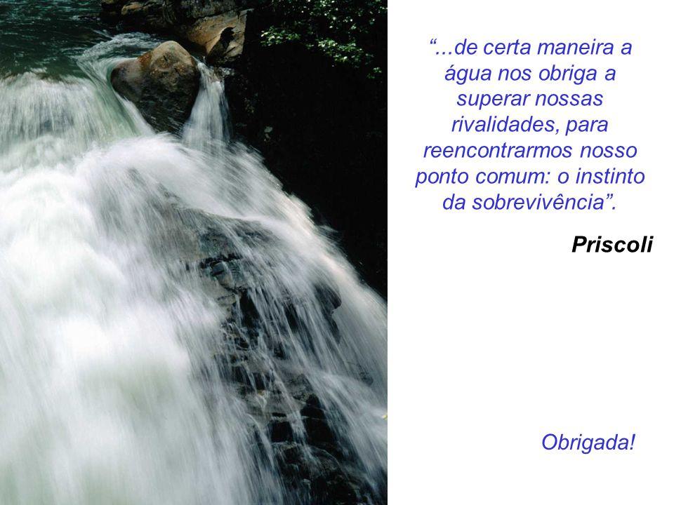 ...de certa maneira a água nos obriga a superar nossas rivalidades, para reencontrarmos nosso ponto comum: o instinto da sobrevivência .