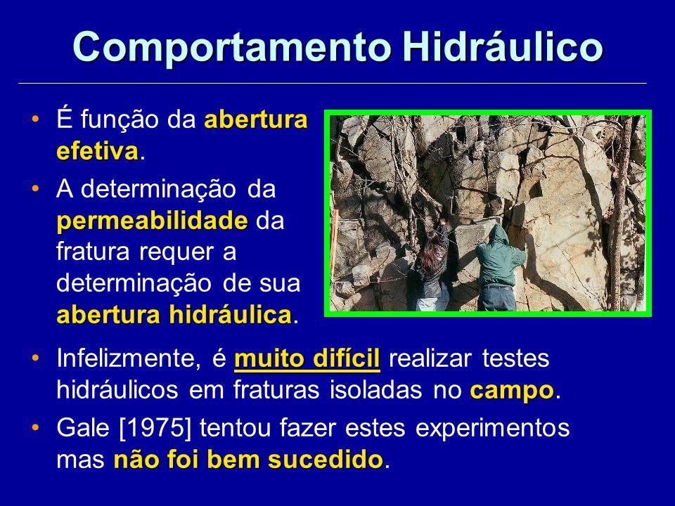 Comportamento Hidráulico