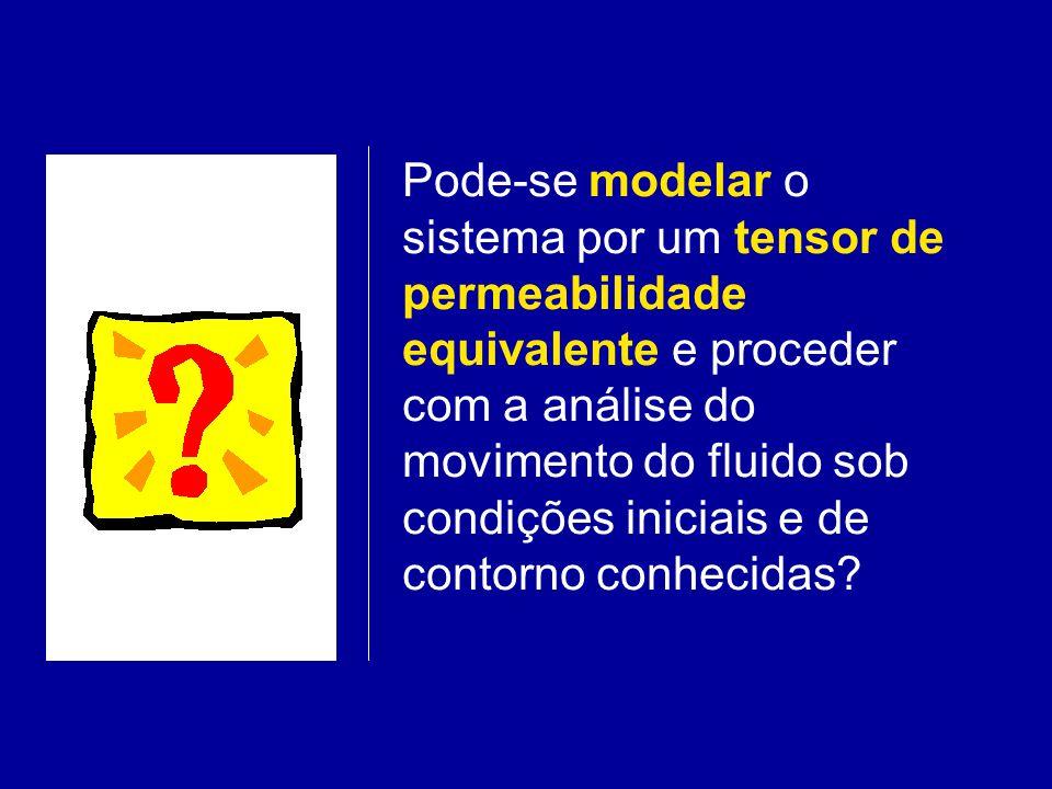 Pode-se modelar o sistema por um tensor de permeabilidade equivalente e proceder com a análise do movimento do fluido sob condições iniciais e de contorno conhecidas