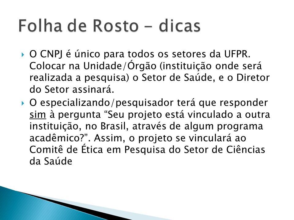 Folha de Rosto - dicas