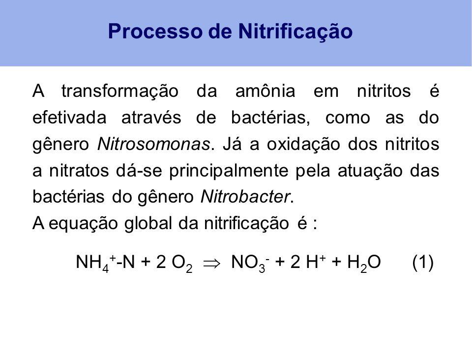 Processo de Nitrificação