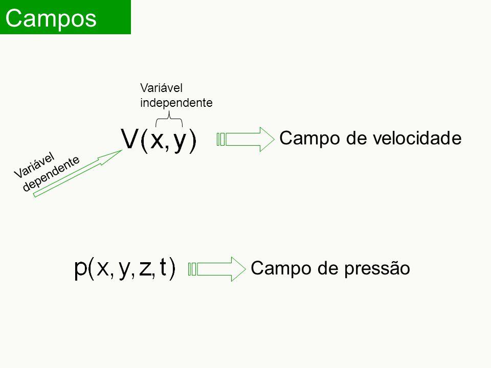 Campos Campo de velocidade Campo de pressão Variável independente