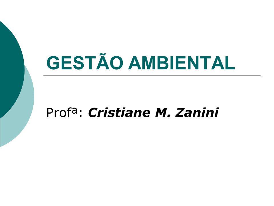 Profª: Cristiane M. Zanini