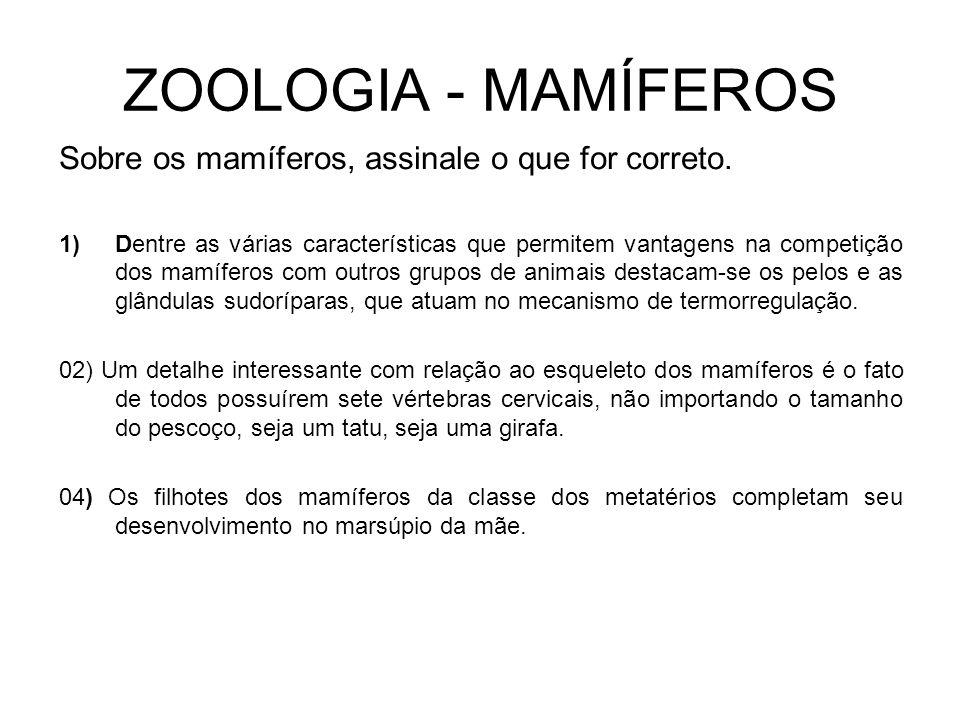 ZOOLOGIA - MAMÍFEROS Sobre os mamíferos, assinale o que for correto.