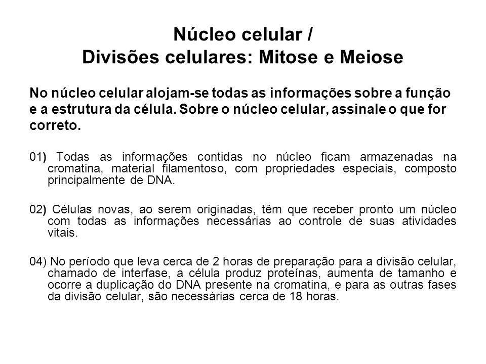 Núcleo celular / Divisões celulares: Mitose e Meiose