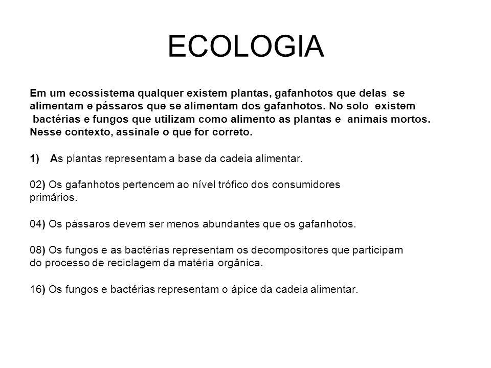 ECOLOGIA Em um ecossistema qualquer existem plantas, gafanhotos que delas se.
