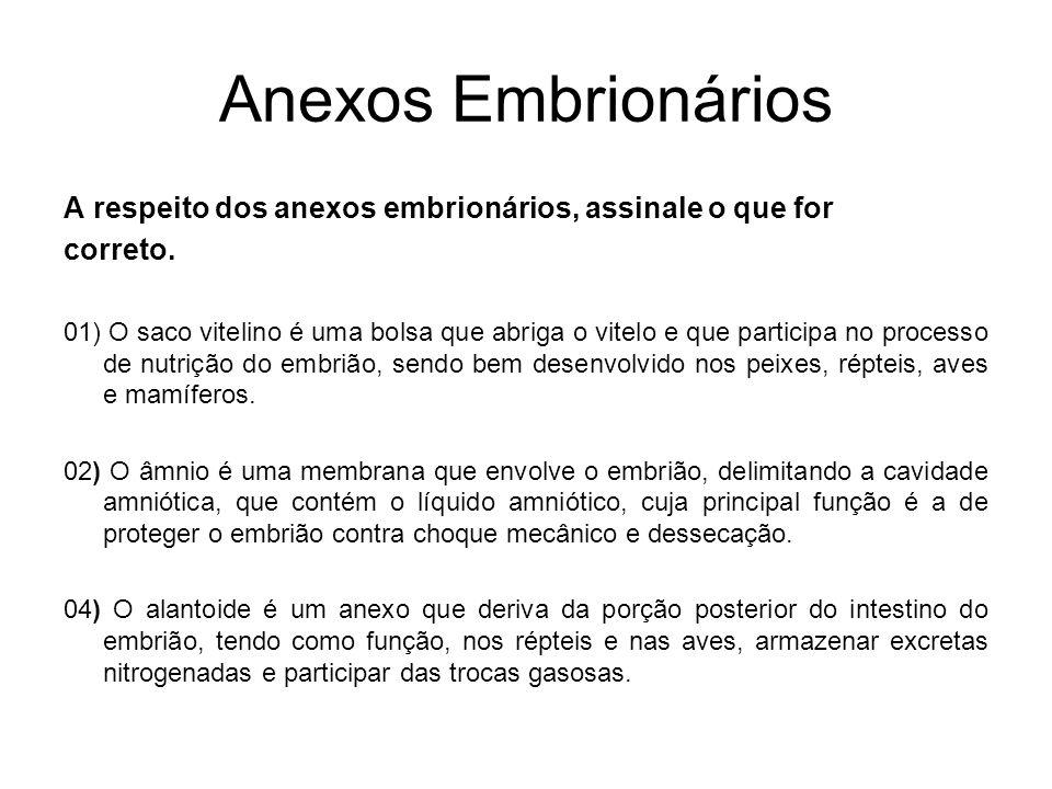 Anexos Embrionários A respeito dos anexos embrionários, assinale o que for. correto.