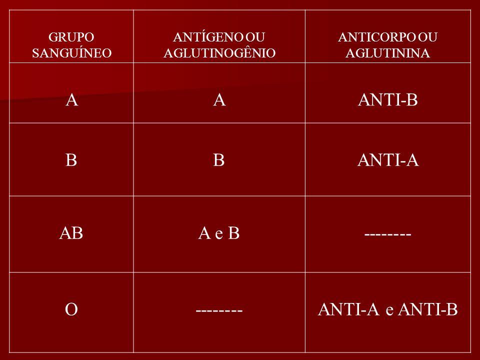 A ANTI-B B ANTI-A AB A e B -------- O ANTI-A e ANTI-B GRUPO SANGUÍNEO