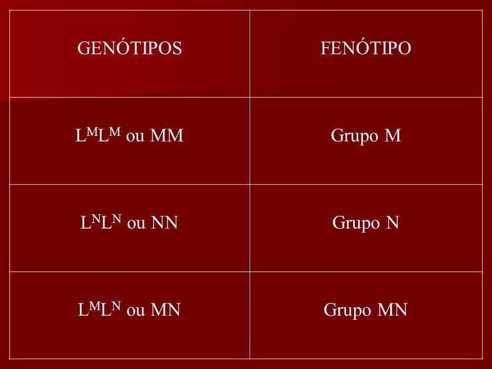 GENÓTIPOS FENÓTIPO LMLM ou MM Grupo M LNLN ou NN Grupo N LMLN ou MN Grupo MN