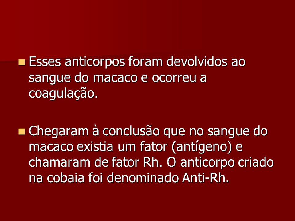 Esses anticorpos foram devolvidos ao sangue do macaco e ocorreu a coagulação.