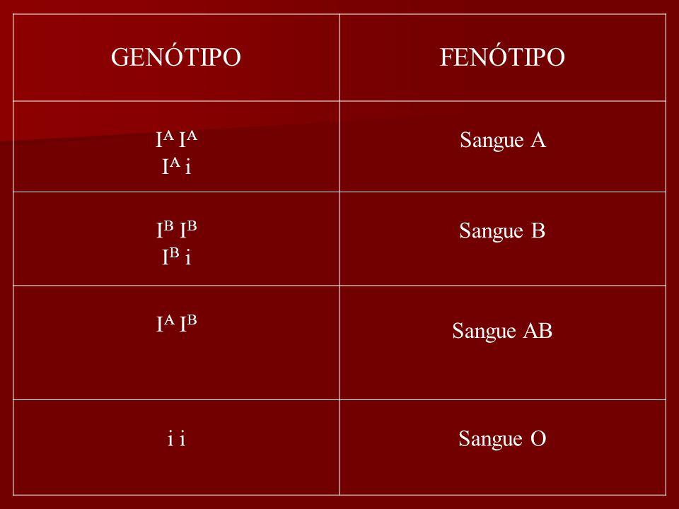 GENÓTIPO FENÓTIPO IA IA IA i Sangue A IB IB IB i Sangue B IA IB