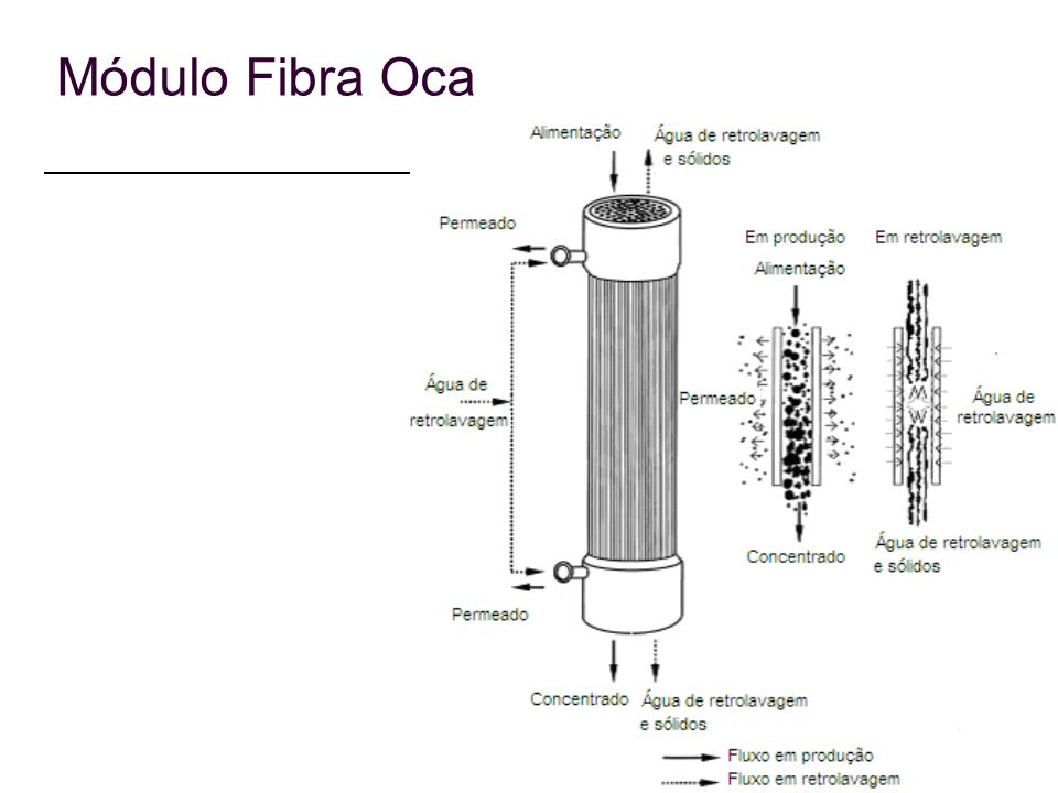 Módulo Fibra Oca