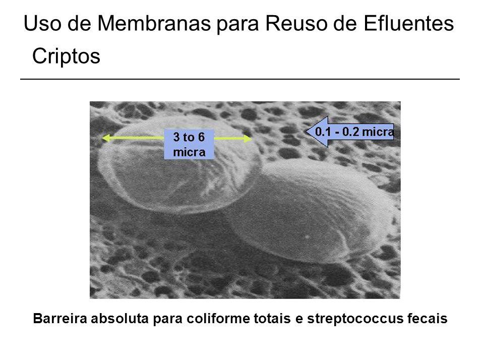 Uso de Membranas para Reuso de Efluentes