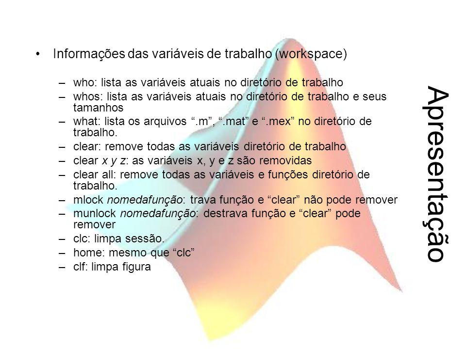 Apresentação Informações das variáveis de trabalho (workspace)