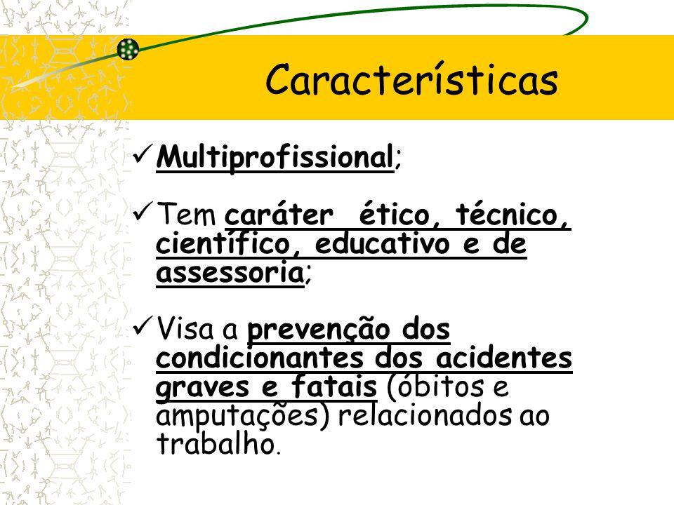 Características Multiprofissional;