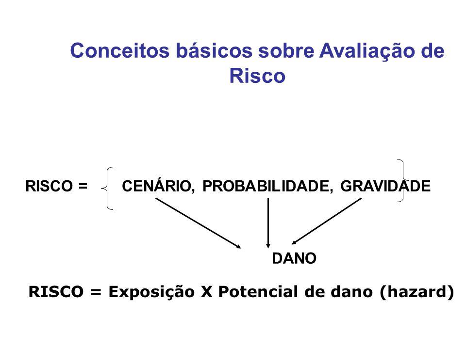 Conceitos básicos sobre Avaliação de Risco