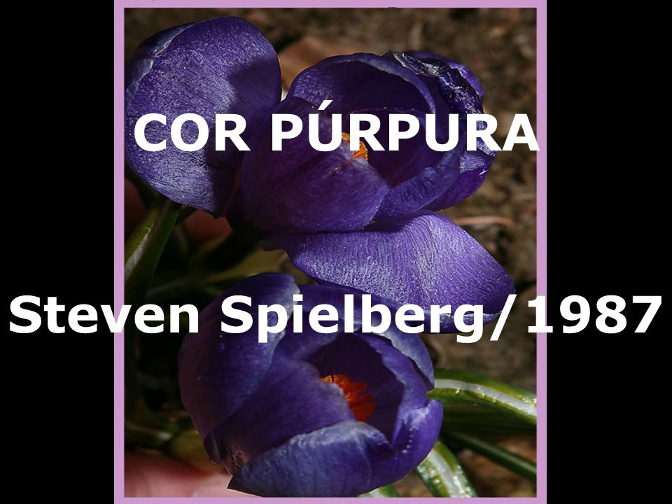 COR PÚRPURA Steven Spielberg/1987