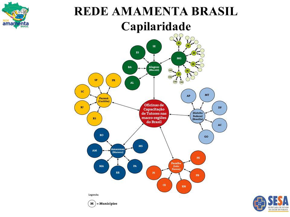 REDE AMAMENTA BRASIL Capilaridade