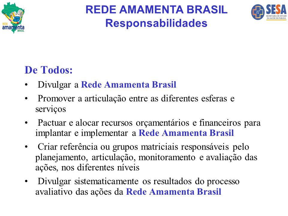 REDE AMAMENTA BRASIL Responsabilidades