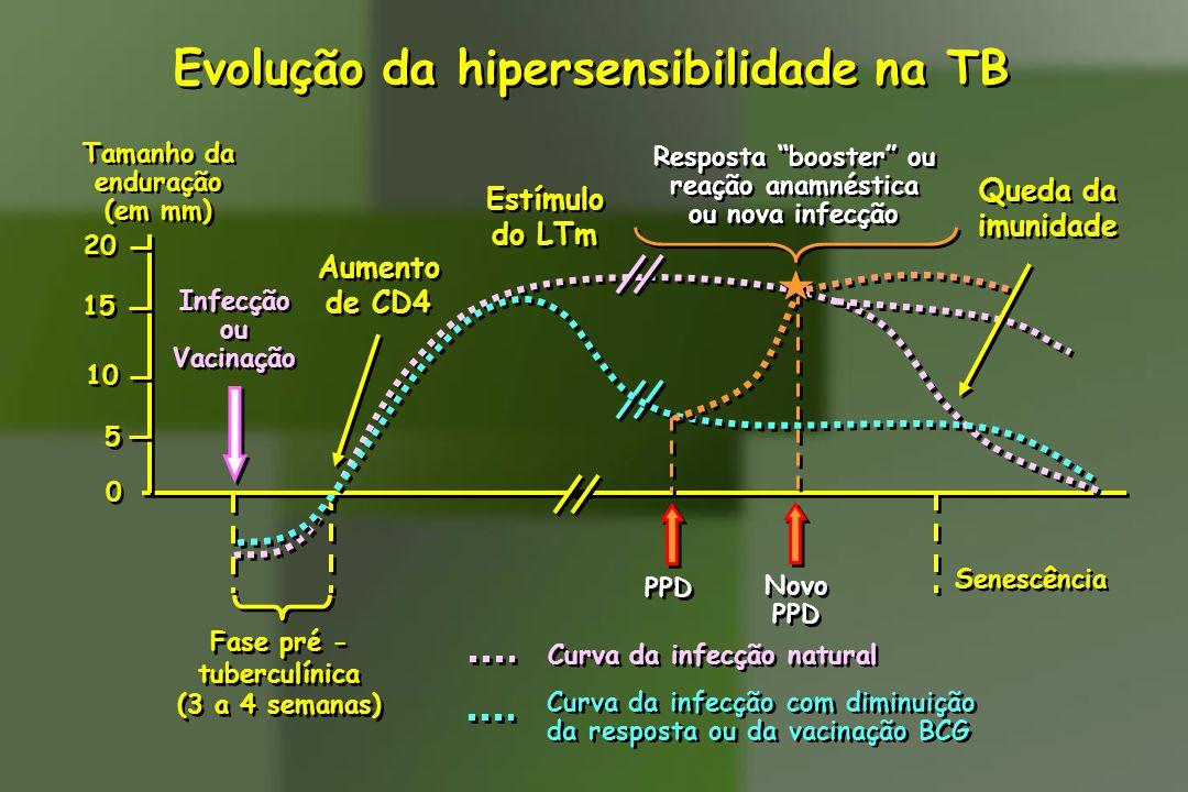 Evolução da hipersensibilidade na TB