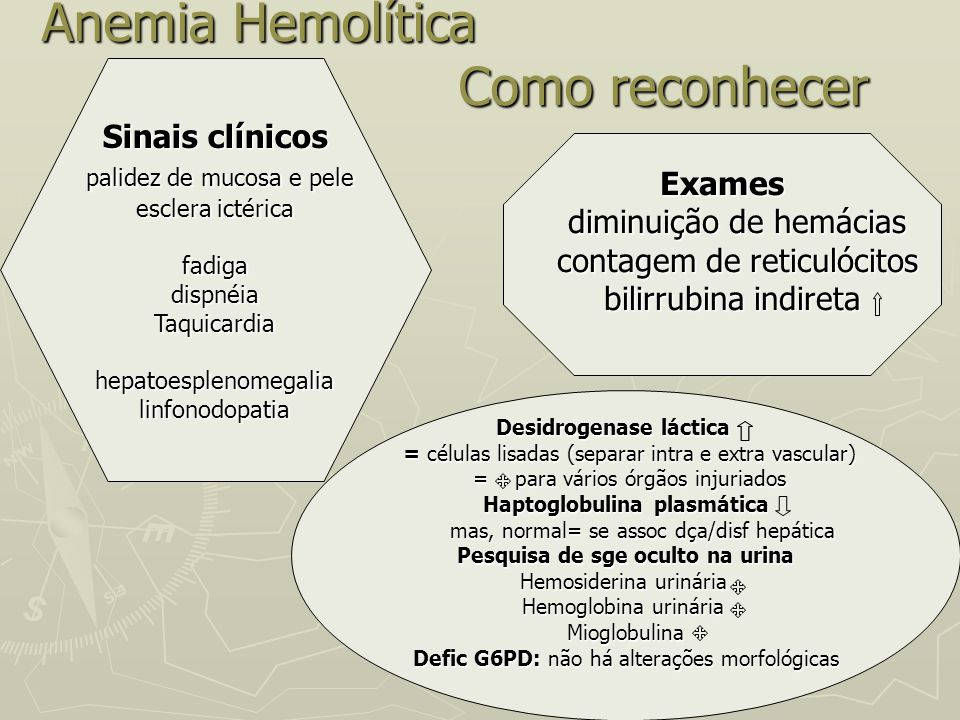 Anemia Hemolítica Como reconhecer