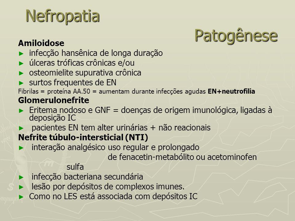 Nefropatia Patogênese