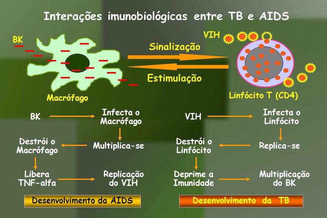 Interações imunobiológicas entre TB e AIDS