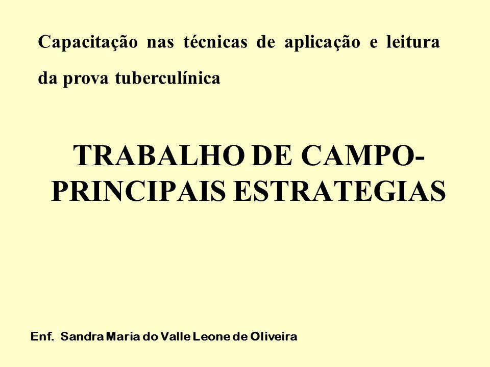 TRABALHO DE CAMPO- PRINCIPAIS ESTRATEGIAS