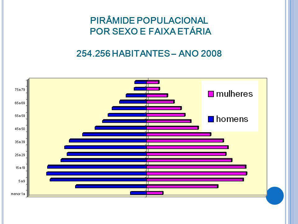 PIRÂMIDE POPULACIONAL POR SEXO E FAIXA ETÁRIA 254