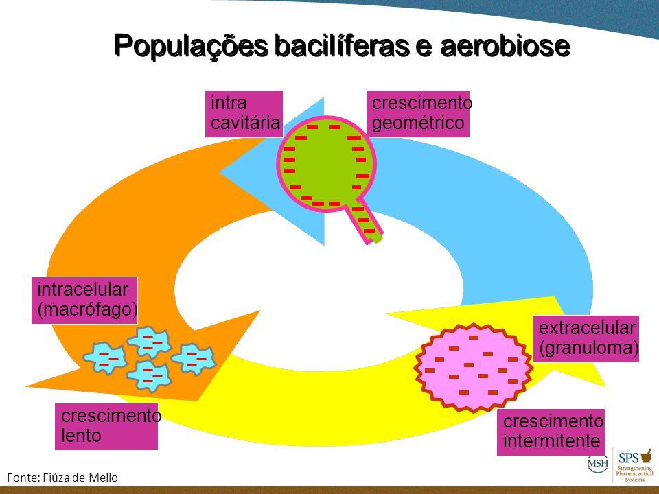 Populações bacilíferas e aerobiose