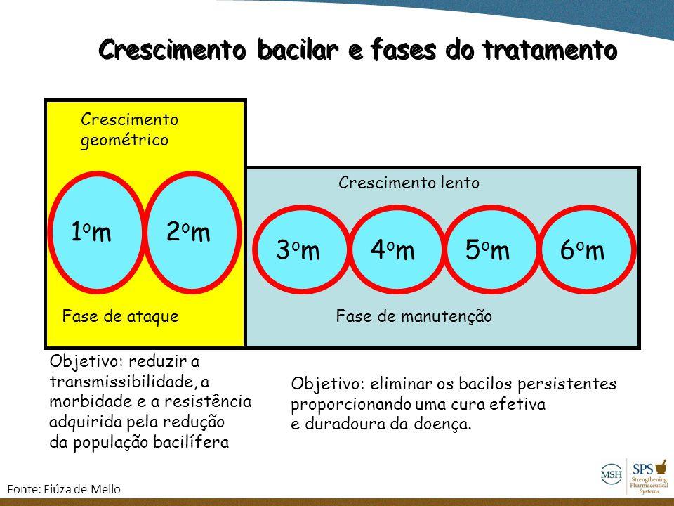 Crescimento bacilar e fases do tratamento