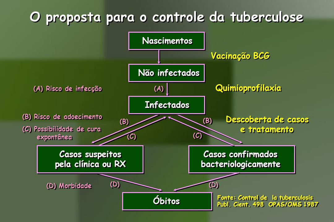 O proposta para o controle da tuberculose